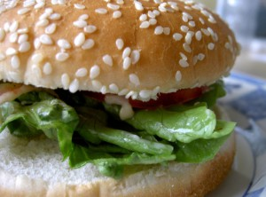 juicy-burger-i-1540447-639x472